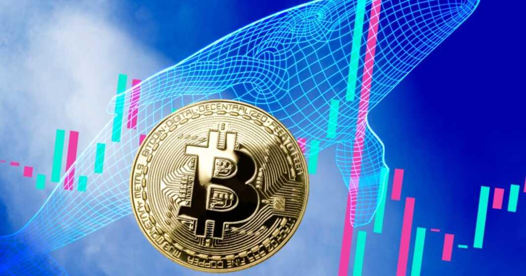 bitcoin pps)